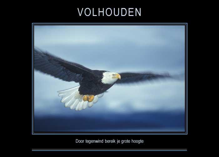 VOLHOUDEN