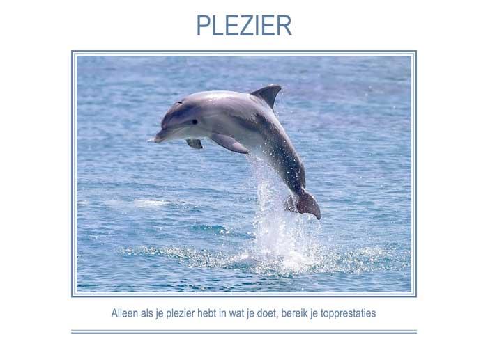 PLEZIER